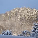 Blick vom Esszimmer auf den verschneiten Iberg
