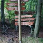 Wanderwege und Mountainbikerwege rund um Bad Harzburg (können direkt vom Haus gestartet werden)