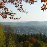 Ausflugsziele  in der Nähe z.B. Burgruine Scharzfels, Großer Knollen, Bismarkturm, Hausberg, Einhornhöhle - alle bewirtschaftet