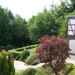 Blick aus dem Wohnzimmer in den Garten und Richtung Bad Sachsa ( 2 Wander km entfernt )
