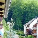 Balkon mit Aussicht zum Wald