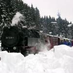 Die Harzquerbahn mit Halt auch in Bad Suderode