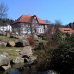 unmittelbare Umgebung - Kurpark mit Rathaus