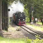 Die legendäre dampfbetriebene Brockenbahn hält in Nähe unseres Hauses, am Bahnhof Schierke. Hier Zugeinfahrt Bhf. Schierke.