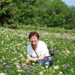 Blühende Bergwiese im Mai/ Juni