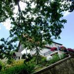 Ansicht vom Wohnhaus Thyrahöhe 9