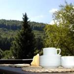 Terrasse mit Grillmöglichkeit und Aussicht