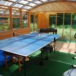 Sportraum mit Tischtennisplatte, Kicker, Dart, Hometrainer