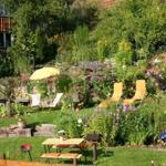 Genießen Sie erholsamen Sonnenstunden in unserem Garten,der ausgestattet ist mit: Sonnenliegen, Liegestühlen, Tisch mit Stühlen, Gartenbank, kleine Bierzelt-Garnitur sowie mobilen Grill u.a. Abends eine zünftige Grill Partie?