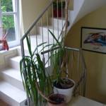 Treppenhaus zu den Ferienwohnungen