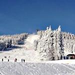 Skigebiet ca. 15 Min. entfernt ( PKW ) .