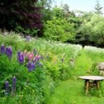 Großer Naturgarten