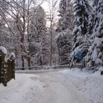 zahlreiche Wanderwege laden dazu ein, die Harzer Bergwelt zu erkunden und starten direkt am Haus. Eine Bushaltestelle finden Sie in 50m Entfernung.