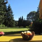 Terrassenblick in den parkähnlichen Garten