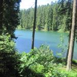 Harzer Wasserregal