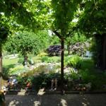 Wunderschöner Garten mit Terasse und Grillmöglichkeit