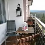 Ausgestatteter Balkon mit freien Blick auf die Natur des Oberharzes