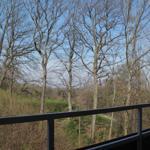 Märzstimmung - Blick vom Balkon