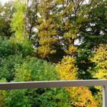 Herbststimmung - Blick vom Balkon