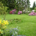 Garten und Spielwiese