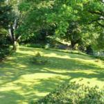 Großer parkähnlicher Garten