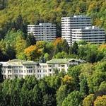Großer Balkon mit Blick in den Wald