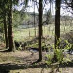 Blick von der Haustür auf das Naturschutzgebiet