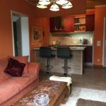 Wohnzimmer mit offenem Küchenbereich im amerikanischen Stil.