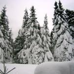 Winter in Bad Suderode