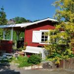 Garten mit Gartenhaus und Teich