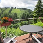 Blick von der Terrasse auf den gegenüberliegenden  Matthias-Schmidt-Berg im Sommer