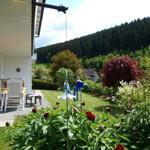 Einblick mit Terrasse und Wald