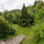 Ein großer Garten