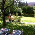 Schattenplatz unter Apfelbaum