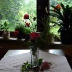 Gastraum mit Blick in den Garten