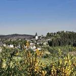 Blick auf das mittelalterliche Eversberg