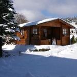 Gartenhaus im Winter
