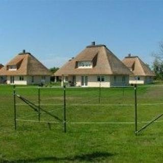 neues Reetdachhaus - Staberdorf