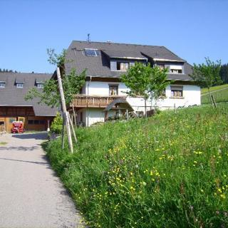 Bauernhof Kleinklausenhof Wohnung 70qm - Vöhrenbach