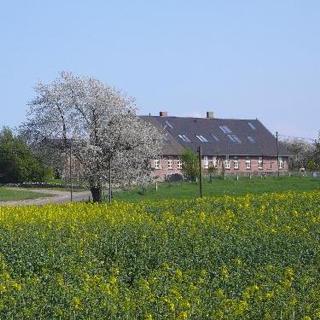 Vogelhaus Rügen, Fewo Zaunkönig - Lancken-Granitz