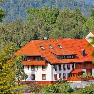 Haus Schlageter Wohnung 1 F - Dachsberg
