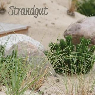 Strandpirat - Strandhafer - Büsum