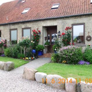 Alte Schule, Bisdorf, Wohnung 1 - Bisdorf