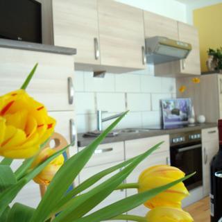 Ferienwohnung Martin - Apartment mit Terrasse - Amelinghausen