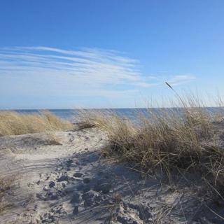 Urlaub am Südstrand - Burgtiefe-Südstrand