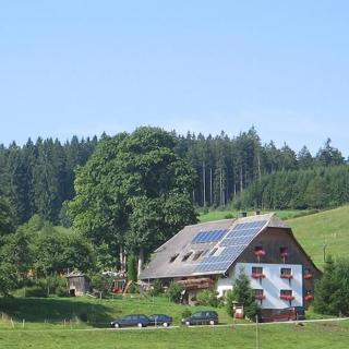 Ferienhof Gerda - Ferienwohnung Talblick - St. Georgen