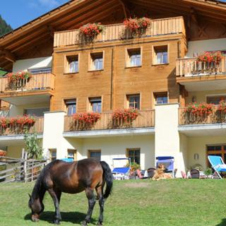Naturresidenz Theistadl Pony 1 - St.Walburg