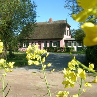 Hof Rügentreu - Reetdach-Oase - EG Wohnung - Kräutergarten - Garz