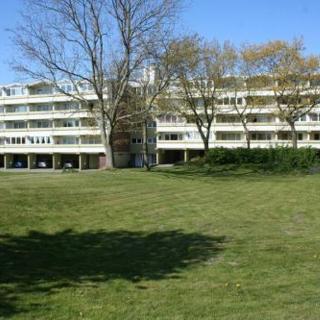 Ferienwohnung L329 - Schönberg