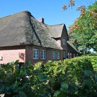 Let Lindguard - Alkersum